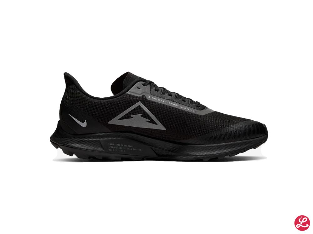Nike Zoom Pegasus 36 Trail GTX (Schwarz)