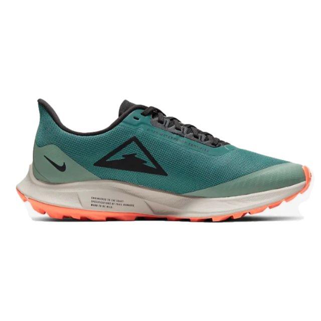 Nike Lady Zoom Pegasus 36 Trail GTX